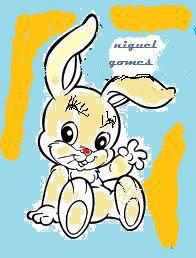 coelhos anões toys BEBES