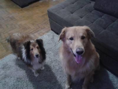 Max e Fidel