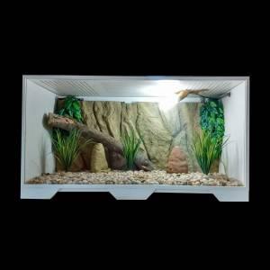 Terrário Para Répteis Iguana Pogona Jabuti Cobra