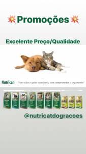 Rações para Cães e Gatos